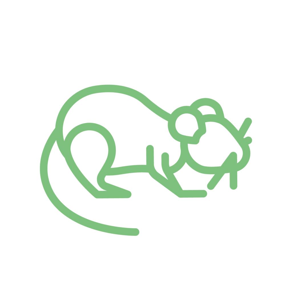 icoon rat